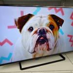 パナソニック 43型 液晶 テレビ を売るなら 総合 リサイクルショップ フライズ佐賀店 佐賀市 買取り 査定