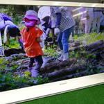 シャープ 32型 液晶テレビ を売るなら リサイクルショップ フライズ佐賀店 佐賀市 中古 買取り